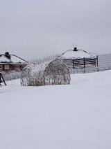 Snow Day Jan 2013