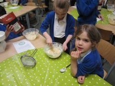Y3W Rainforest Cookies